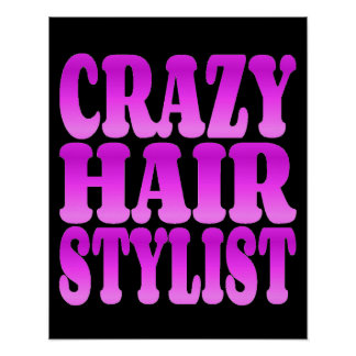 Crazy Hair Stylist Poster