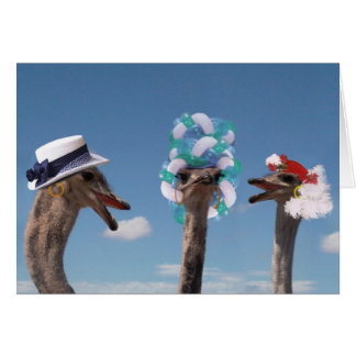 Crazy Hat Day at the Races Card