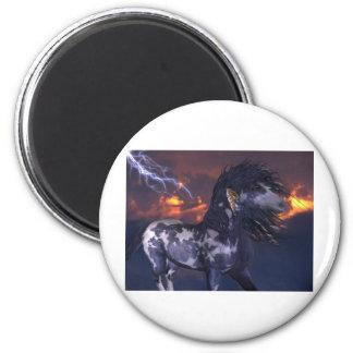 Crazy Horse Blue Magnet