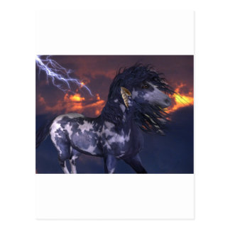 Crazy Horse Blue Post Cards