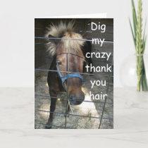 CRAZY HORSE THANK YOU