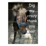 CRAZY HORSE THANK YOU GREETING CARD
