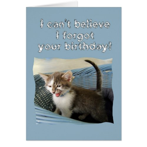 Crazy Kitten Belated Birthday Card