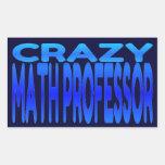 Crazy Math Professor Rectangular Stickers