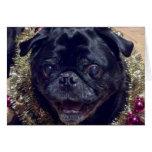 Crazy Pug Christmas Card