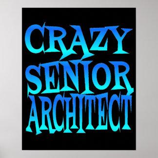 Crazy Senior Architect Poster