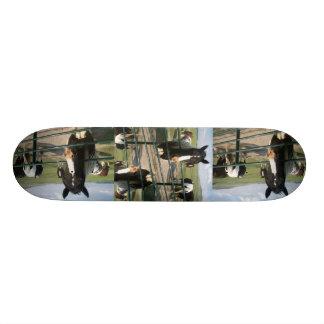 CrAzY Sk8 Horse Skateboard Deck