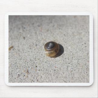 Crazy Snail Mouse Pad