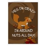 Crazy Squirrel Cards