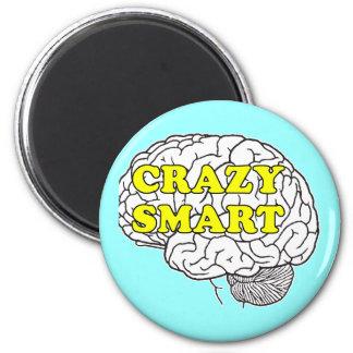 crazysmart magnet
