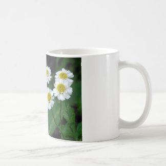 Crea en la magia de la tarjeta de la vida taza básica blanca