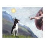 Creación de la Boston Terrier (#3) Tarjetas Postales