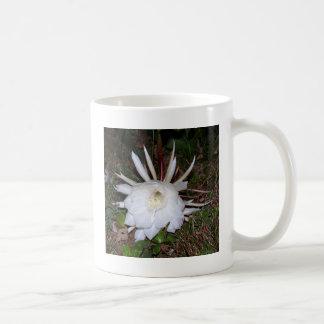 creaciones florales tazas de café