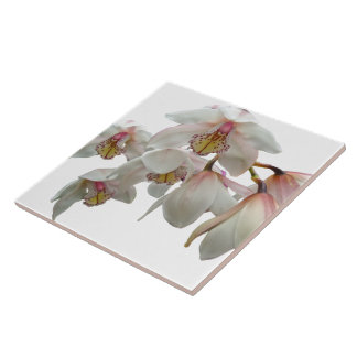Cream and Pink Orchids Ceramic Tile