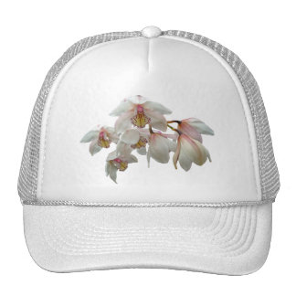 Cream and Pink Orchids Mesh Hats