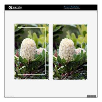 Cream Australian banksia flower Skin For Kindle Fire