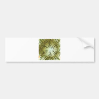 cream ball with ferns bumper sticker