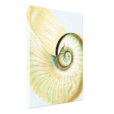 Beach Themed Cream Blue Beach Sea Shell Canvas Print