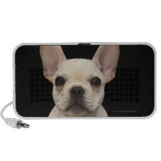 Cream colored French Bulldog puppy Mini Speaker