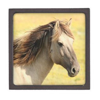 Cream Colored Horse Giftbox Keepsake Box