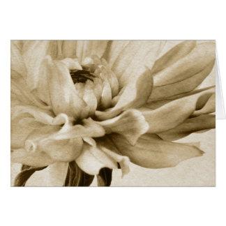 Cream Dahlia Flower - Dahlias Floral Background Greeting Cards