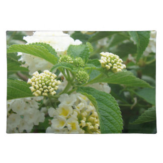 Cream Hydrangas Placemat