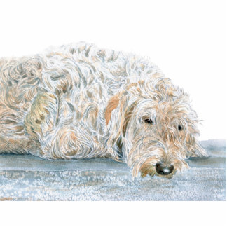 Cream Labradoodle Sculpture Standing Photo Sculpture