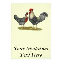 Cream Legbar Chickens Invitation