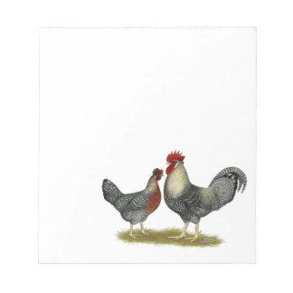 Cream Legbar Chickens Notepad