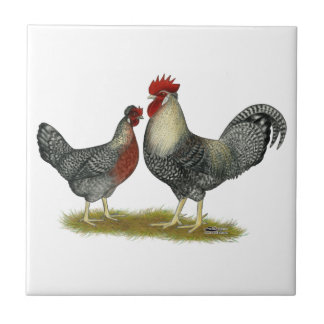 Cream Legbar Chickens Small Square Tile