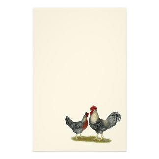 Cream Legbar Chickens Customized Stationery