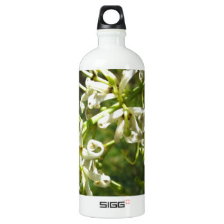 Cream on green SIGG traveler 1.0L water bottle