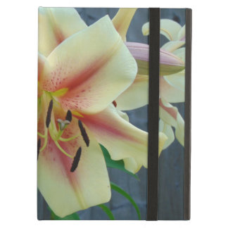 Cream, pink, chocolate lily cover for iPad air