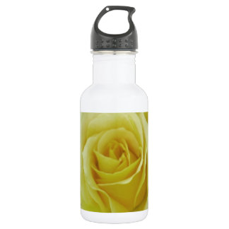 Cream Rose and meaning Stainless Steel Water Bottle