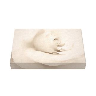 Cream Rose Gallery Wrap Canvas