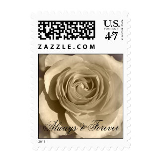 Cream Rose Forever and Always Stamp