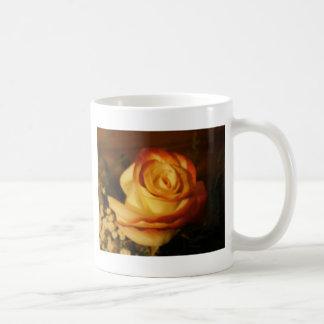 Cream Rose Photograph Classic White Coffee Mug