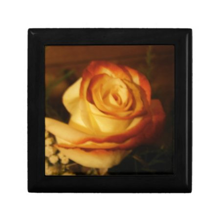 Cream Rose Photograph Keepsake Boxes