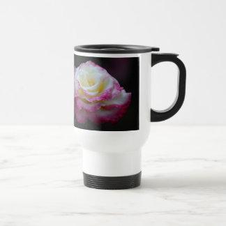 cream rose with pink edges mug