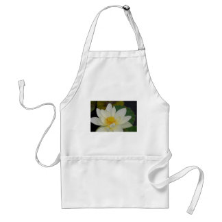Cream Water Lily02.JPG Adult Apron