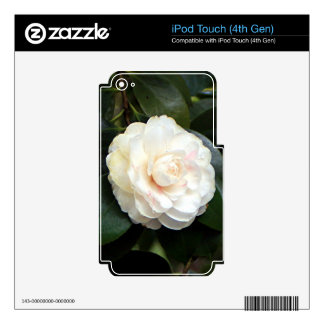 Cream white camellia flower decal for iPod touch 4G
