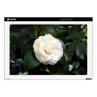 Cream white camellia flower laptop skins