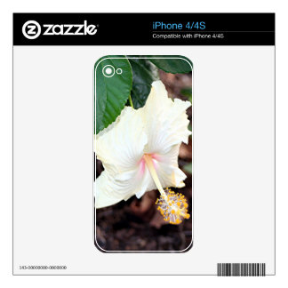 Cream white hibiscus flower skin for the iPhone 4S