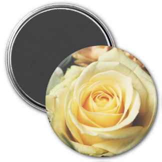 Creamy Country Rose Magnet