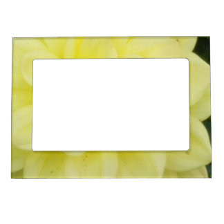 Creamy Dahlia Magnetic Picture Frame