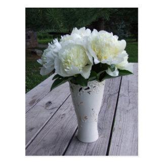 Creamy White Peonies In Vase Postcard