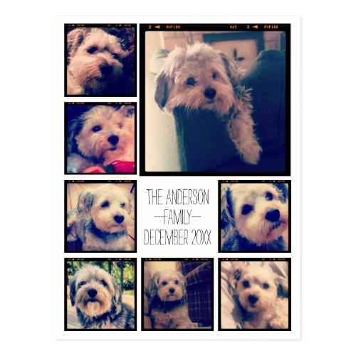 Create a Custom Photo Collage with 8 Photos Postcard
