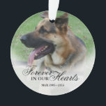 "Create a Name and Photo Pet or Person Memorial Ornament<br><div class=""desc"">Remember your loved one i.e parent,  child,  sister,  brother,  grandparents,  dog,  cat,  etc with this simple photo christmas ornament. Place it on your xmas tree or anywhere in your home,  this ornament makes a unique gift for someone special.</div>"