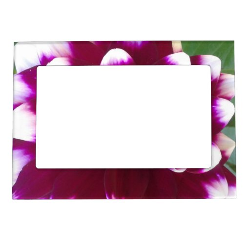 Create Your One Of A Kind Magnetic Frame