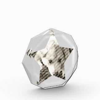 Create Your Own Acrylic Block Photo Frame Template Acrylic Award